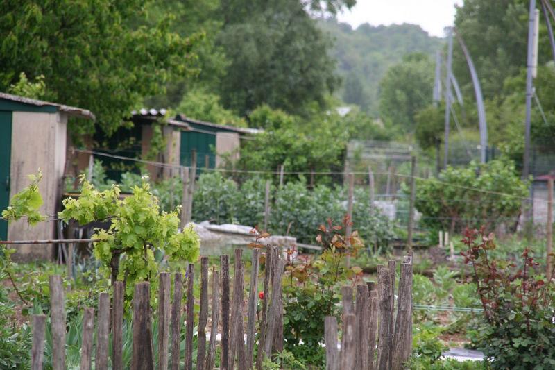 Floirac  Jardins cheminots  7