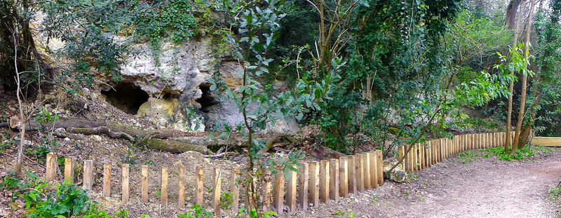 Le parc du castel Floirac